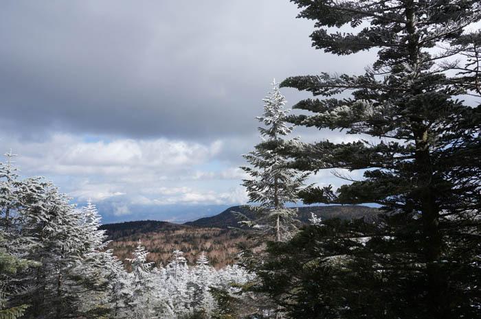 雨池までは雪の森をダウンヒル!
