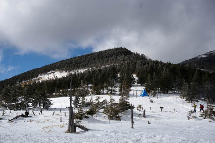 標高2337m、雲の上の雪の世界へ一直線!