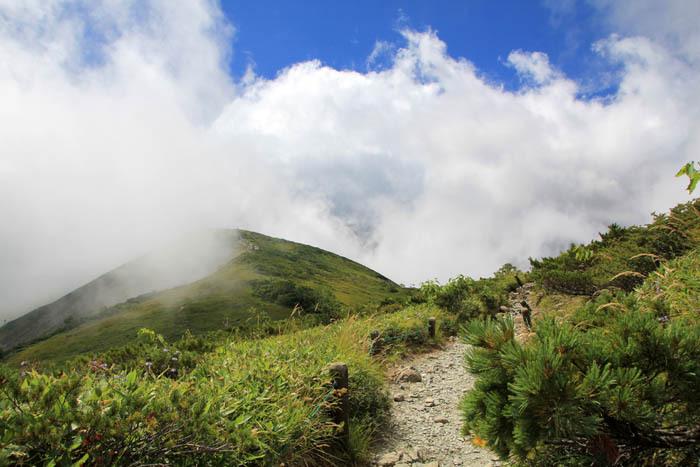 八方池までは森林限界を越えた高山バイキング