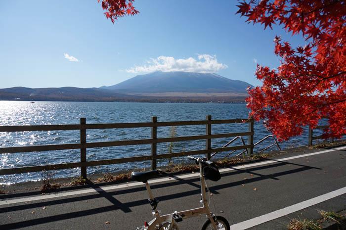 サイクリングで楽しもう!富士山と山中湖の美しい紅葉