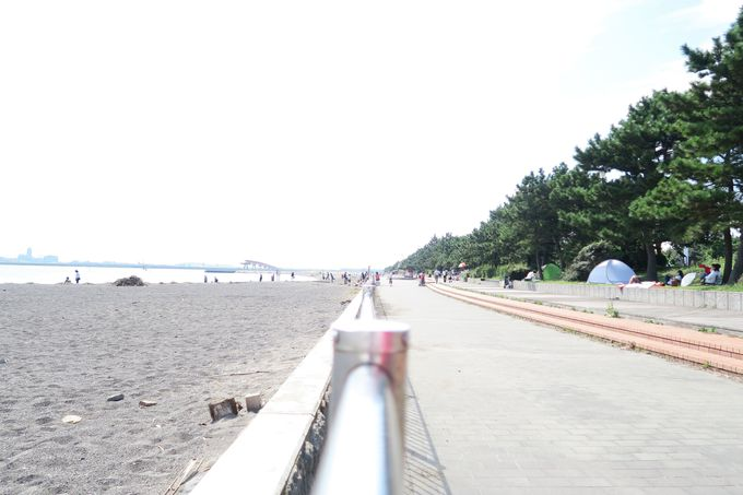 「城南島海浜公園」って、どんなところ?