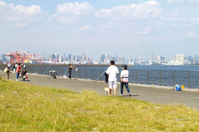 実は、東京都心の景色を一望できる、穴場スポット