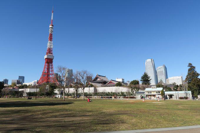 東京タワーを目の前に臨む、都会のオアシス