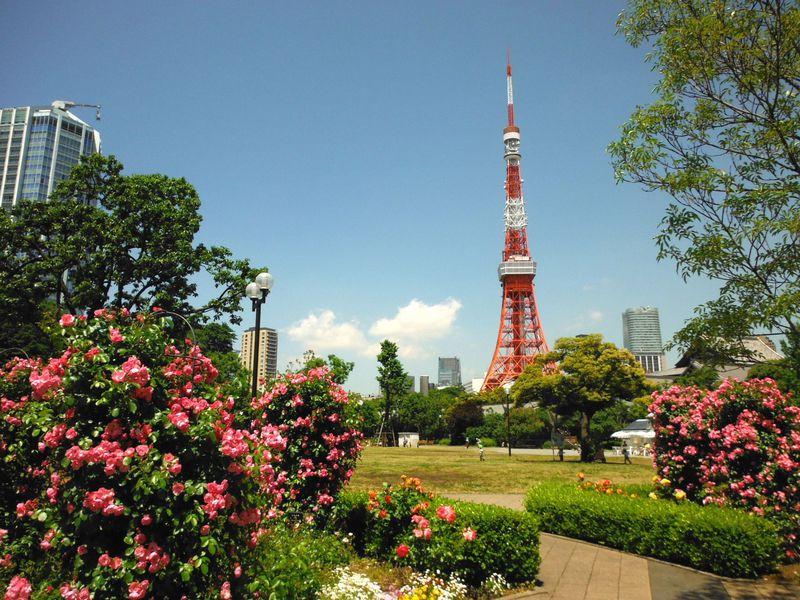 東京 名物 観光