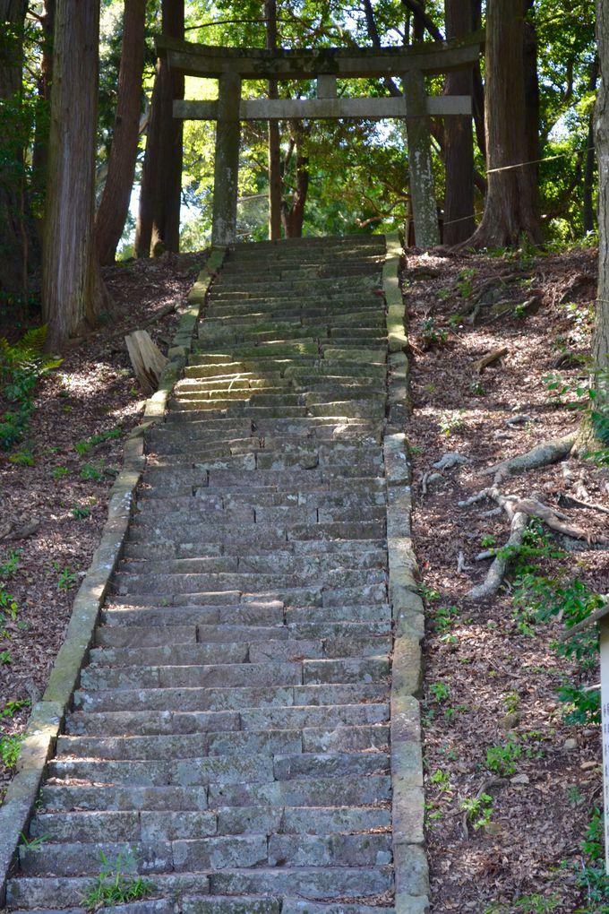 古い石段を登って、いざ山頂にある「八幡神社」へ