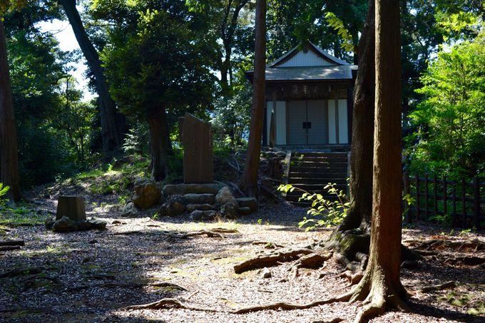 小さな森に守られている、「八幡神社」