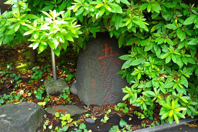 関東のお伊勢様「芝大神宮」