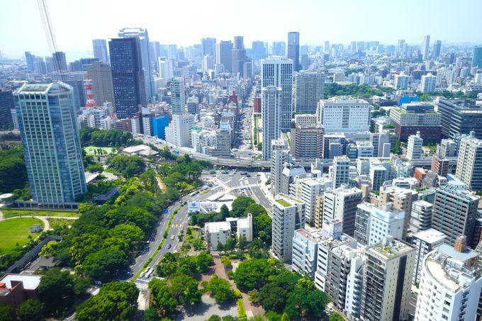 浜松町駅から実は歩いて行ける!「東京タワー」