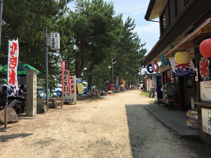 キャンプやマリンスポーツなどのアクティビティや売店も充実