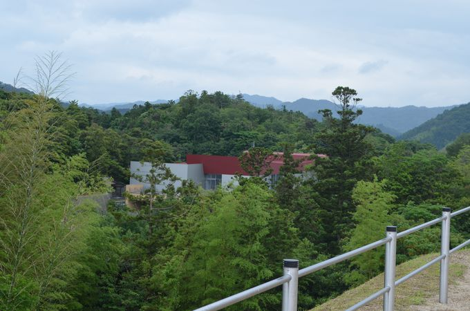 出雲弥生の森博物館