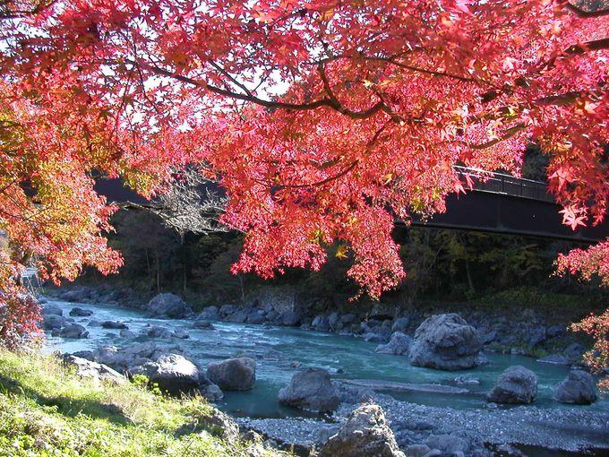 知る人ぞ知る紅葉の名所!奥多摩「御岳渓谷」
