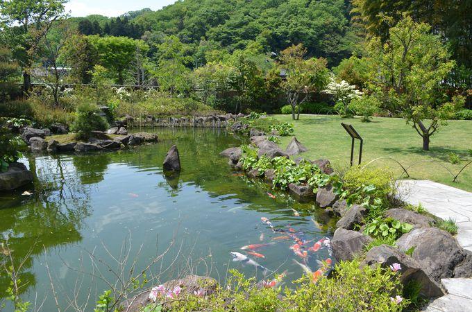 池泉(らせん)回遊式庭園