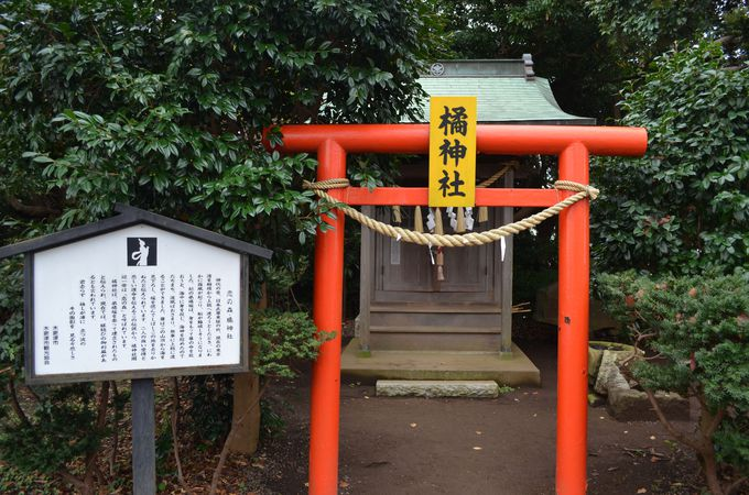 橘神社〜ここは恋のパワースポット〜