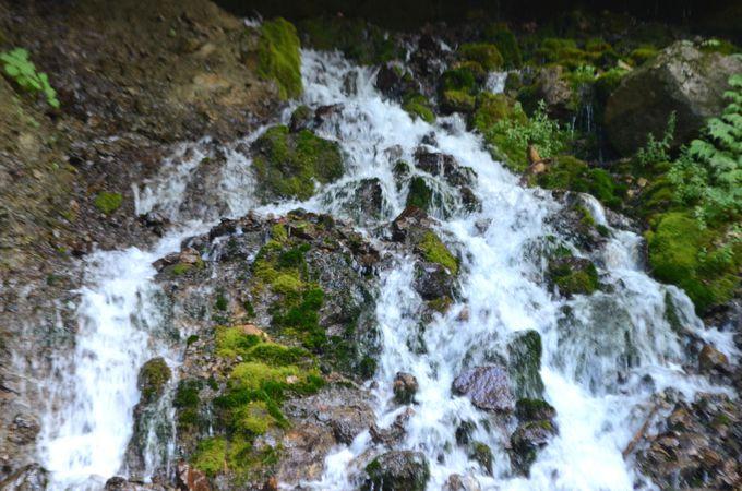 水が豊富で絶景が眼の前に!