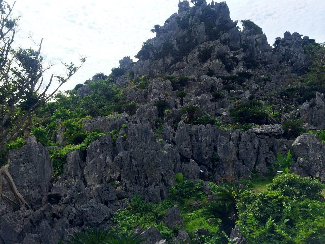 琉球神話を感じに行こう!沖縄大石林山のがじゅまるロードを歩く