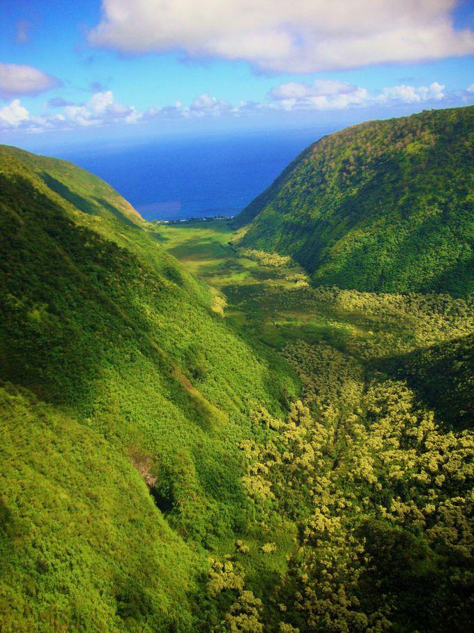 谷間を縫うように飛行する!自然が織りなす神秘の渓谷アドベンチャー!
