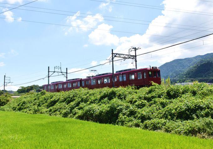 各駅停車のローカル線「養老鉄道」でのんびり列車旅