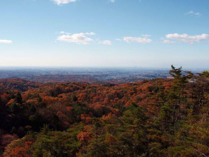 紅葉ハイキング!岩巣山へ登ろう