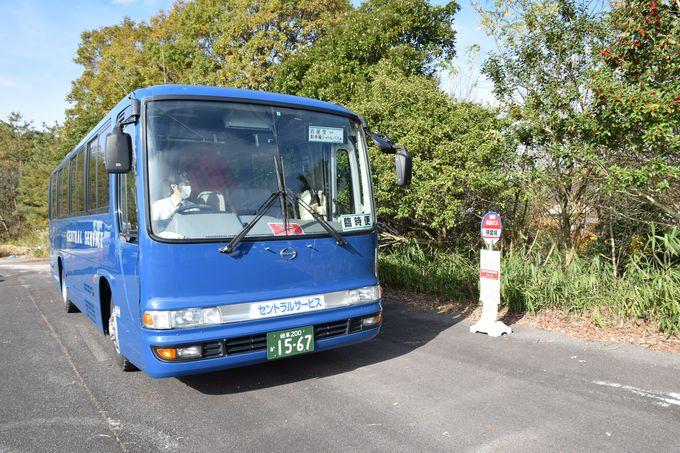 岩屋堂へは無料バスがおすすめ!