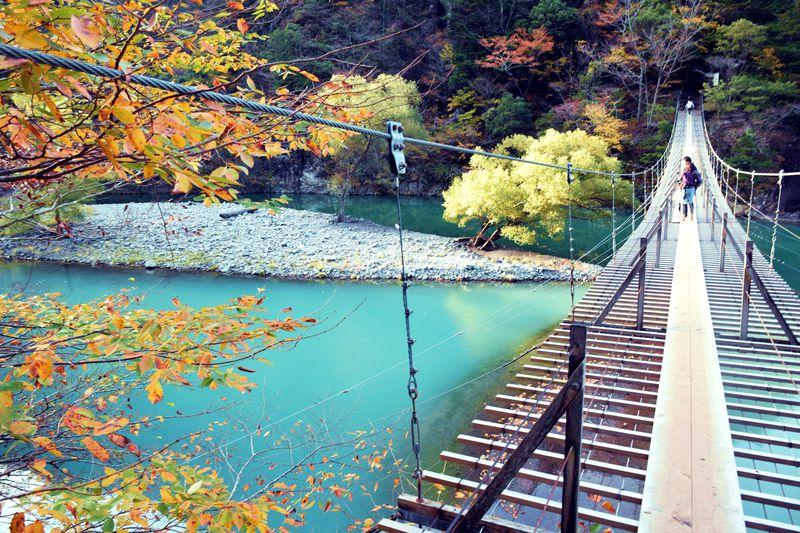絶景!紅葉の「夢の吊り橋」!
