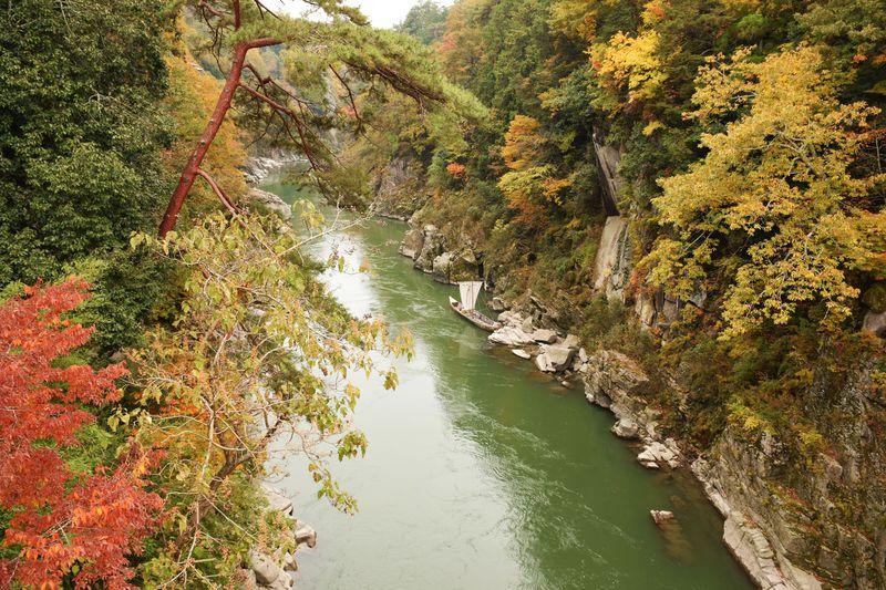 「天竜峡駅」で絶景紅葉ハイキング!