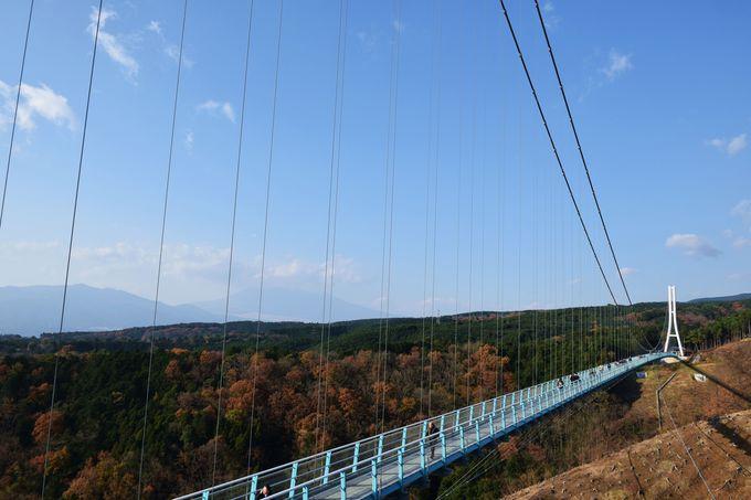 日本最長400mの大吊り橋「三島スカイウォーク」