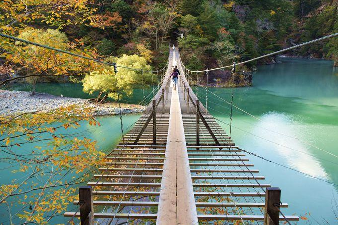 幻想的な「夢の吊り橋」