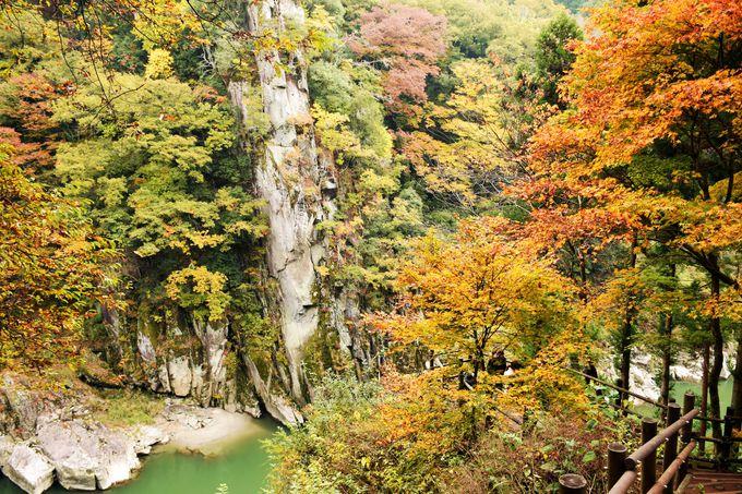 華麗な名勝「天竜峡」
