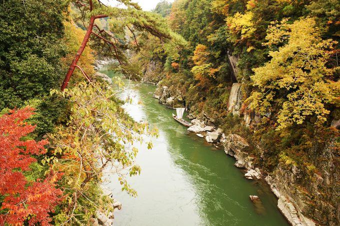 訪問は断然秋!紅葉の天竜峡を楽しもう!
