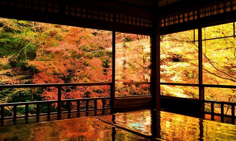 これが京都「瑠璃光院」の絢爛たる紅葉美