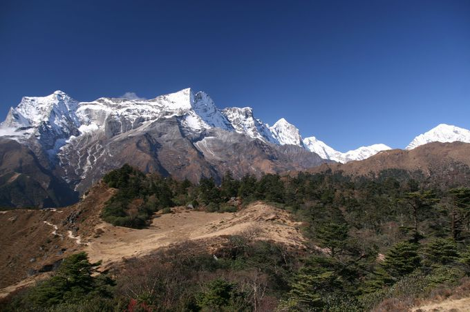世界で一番大きな山を見に行こう!