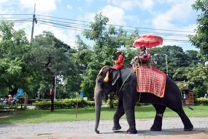 古都アユタヤで象に乗ろう!