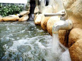 羽田空港から15分で温泉!下町の名湯、東京・大田区「幸の湯」