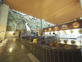 炭酸温泉、源泉水風呂で温泉三昧! 東京大田区「はすぬま温泉」