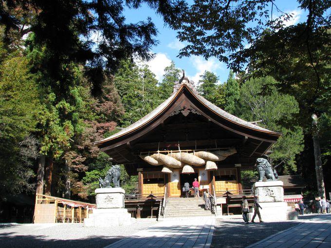 神聖な森を祀る諏訪大社。荘厳な社殿に太古の歴史を想う。