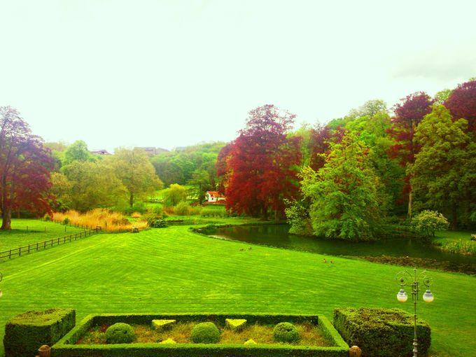 広大な敷地を誇る、貴族の夏の別荘!
