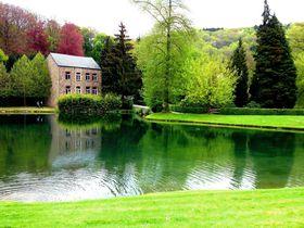 チューリップが競い咲き!春のベルギー「アンヌヴォア庭園」へ