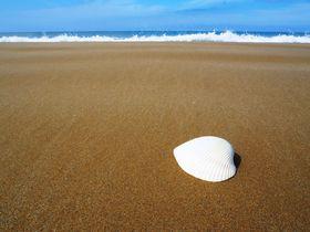 日本のベストビーチにも!「休暇村 能登千里浜」で、知られざる美肌湯とブランドガニを極める!