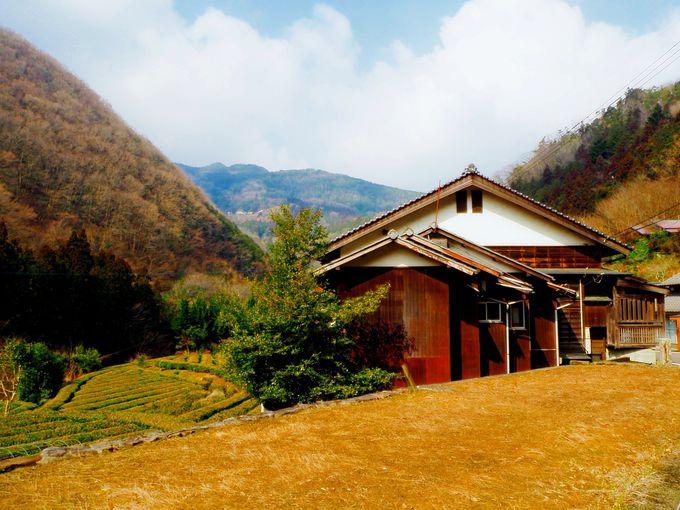 里山散策、琴平観光…気の向くままに。