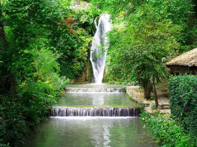 魅力は豊かな緑、そして水
