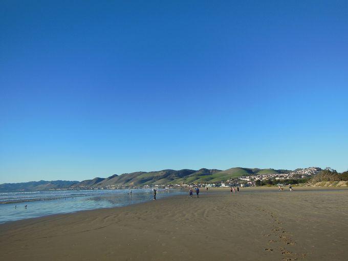 一年中楽しめる、温暖な気候のビーチ