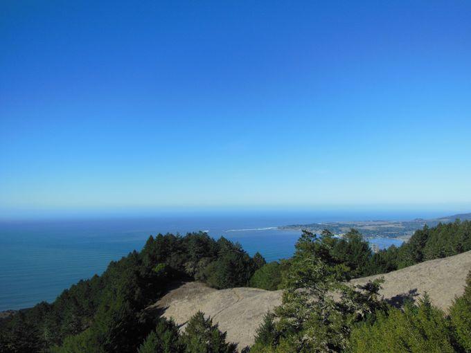 お隣の州立公園で、太平洋の絶景も一緒に!