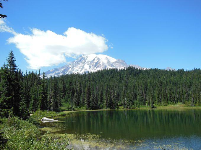 湖面にも広がる、天国な風景