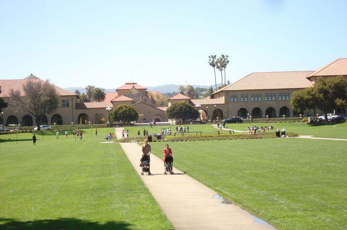 キャンパスの中に広がる緑の公園