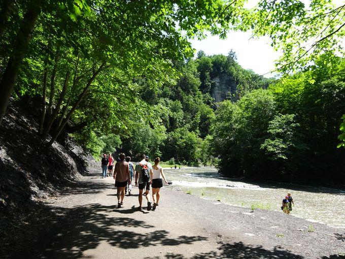 あのナイアガラの滝よりも高い「タガノック滝」