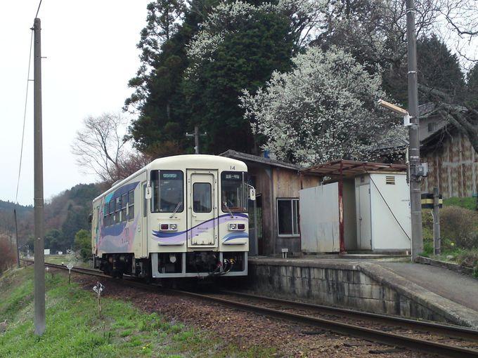コトコト走るローカル列車「明知鉄道」のワンマンカー