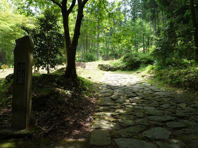 木立の中の石畳の街道を「馬籠宿」に向かって歩きます