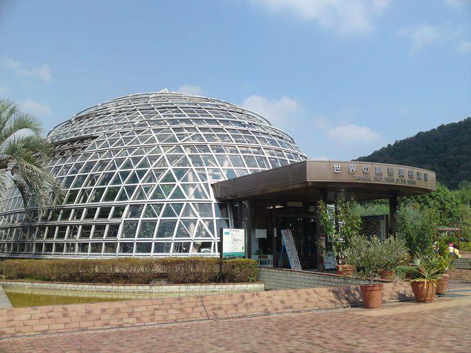 古墳を模して造られた世界の熱帯果樹温室