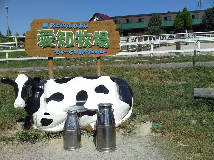 名古屋近郊とは思えない広大な観光牧場です