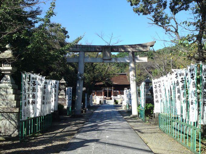 「手力雄神社」で勝運を得るにはまずこの鳥居をくぐります!